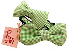 Green Bow-tie Dog Collars Made in USA