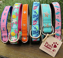 Beach Dog Collars at PawsPetBoutique.com