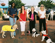 Paws pet boutique models for CN8 Morning Show