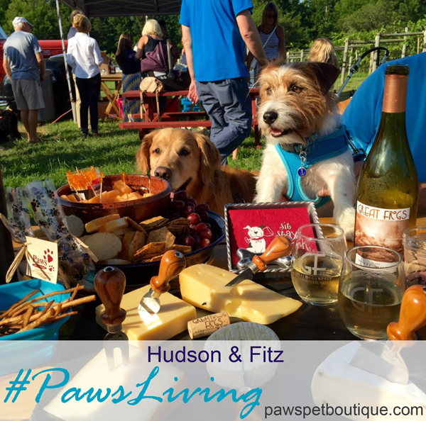 Hudson & Fitz #Pawsliving at Wag & Wine thanks to Victoria