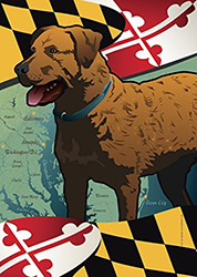 Maryland Dog Flag with Chesapeake Bay Retriever