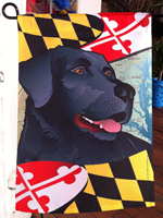 Lab Maryland Flags