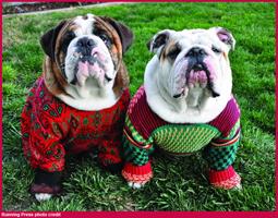 uglysweater-credit200.jpg