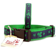 Classic Green Shamrock Dog Collars made in USA
