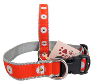 Orange Daisy Dog Collars look so happy!