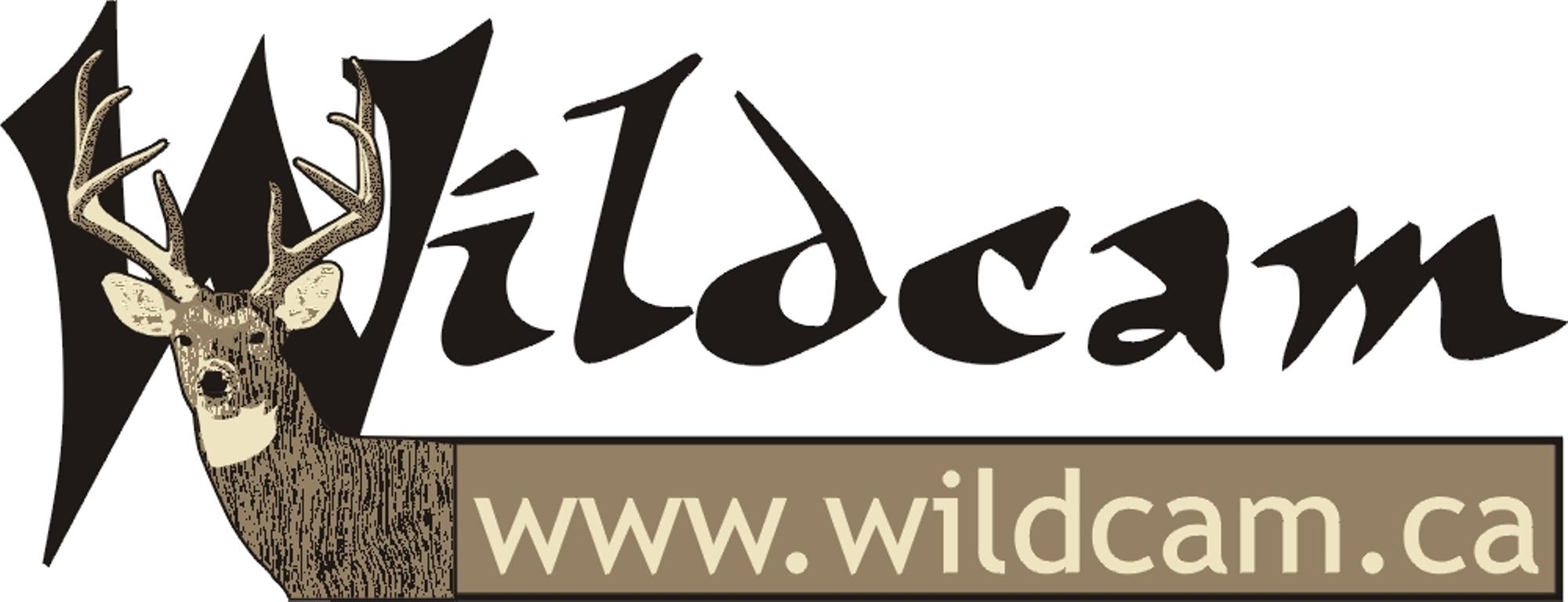 wildcam.jpg