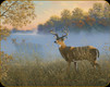 Deer Tempered Glass Cutting Board - Deer 5