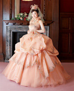 Pale Orange Wedding Dress
