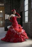 Red Bridal Gown  - Available in Every Color 1