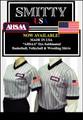 AHSAA (Alabama) Grey V-Neck Shirt with Black Pinstripe-Men and Women
