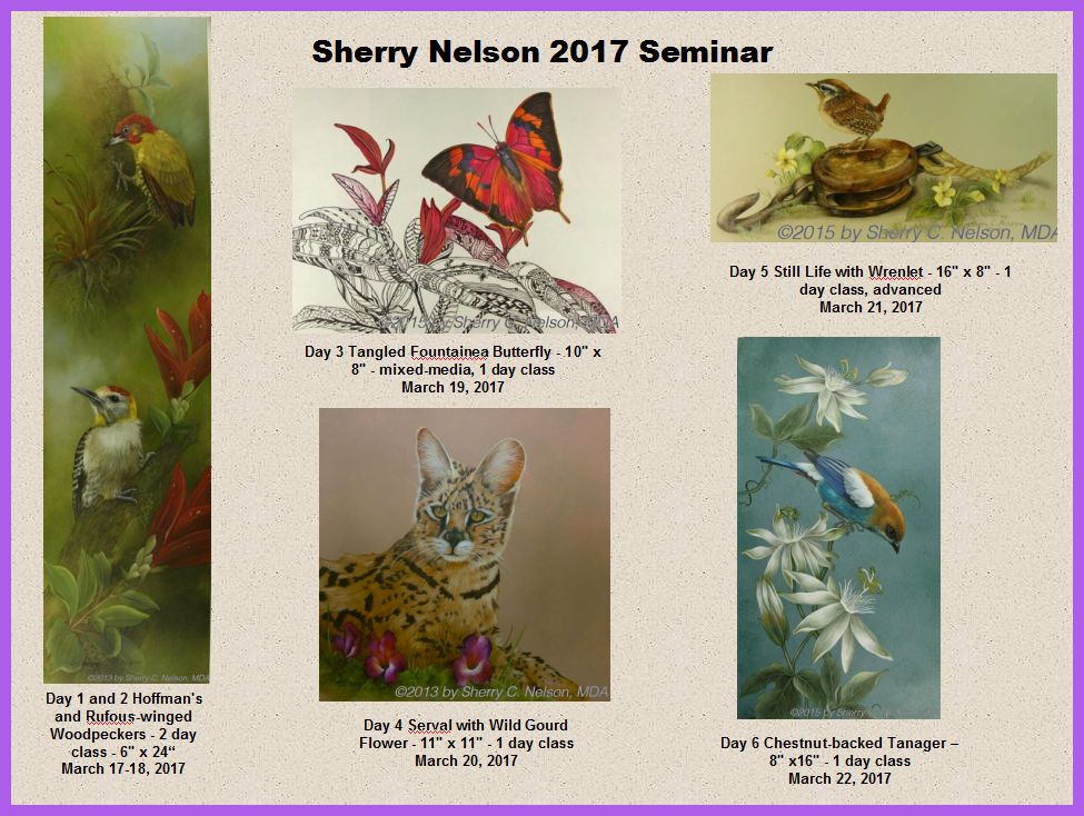 sherry-nelso-2017-collage.jpg