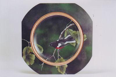 sn-painted-redstart-warbler-191410-sm.jpg