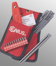 Genius Tools Star StarScrewdriver Bit Set 25 Pc SB-225TO