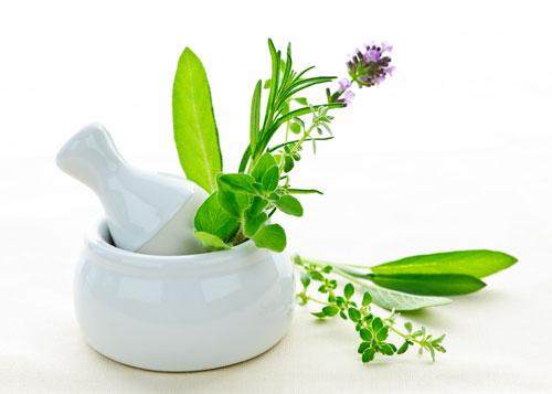 herbs-1.jpg