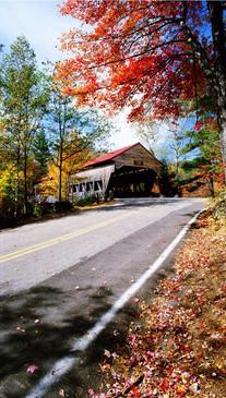 Autumn Covered Bridge Backdrop