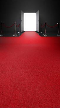 Red Carpet Entrance Backdrop