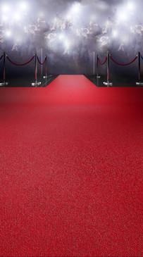 Red Carpet Paparazzi Backdrop