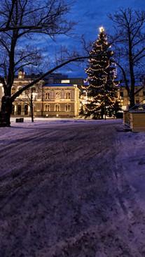 Christmas Manor Drive Backdrop