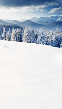 Snowy Mountain View Backdrop