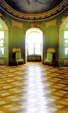Aristocratic Green Backdrop