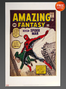 Amazing Fantasy #15 Limited Edition Lithograph Print Jack Kirby and Steve Ditko