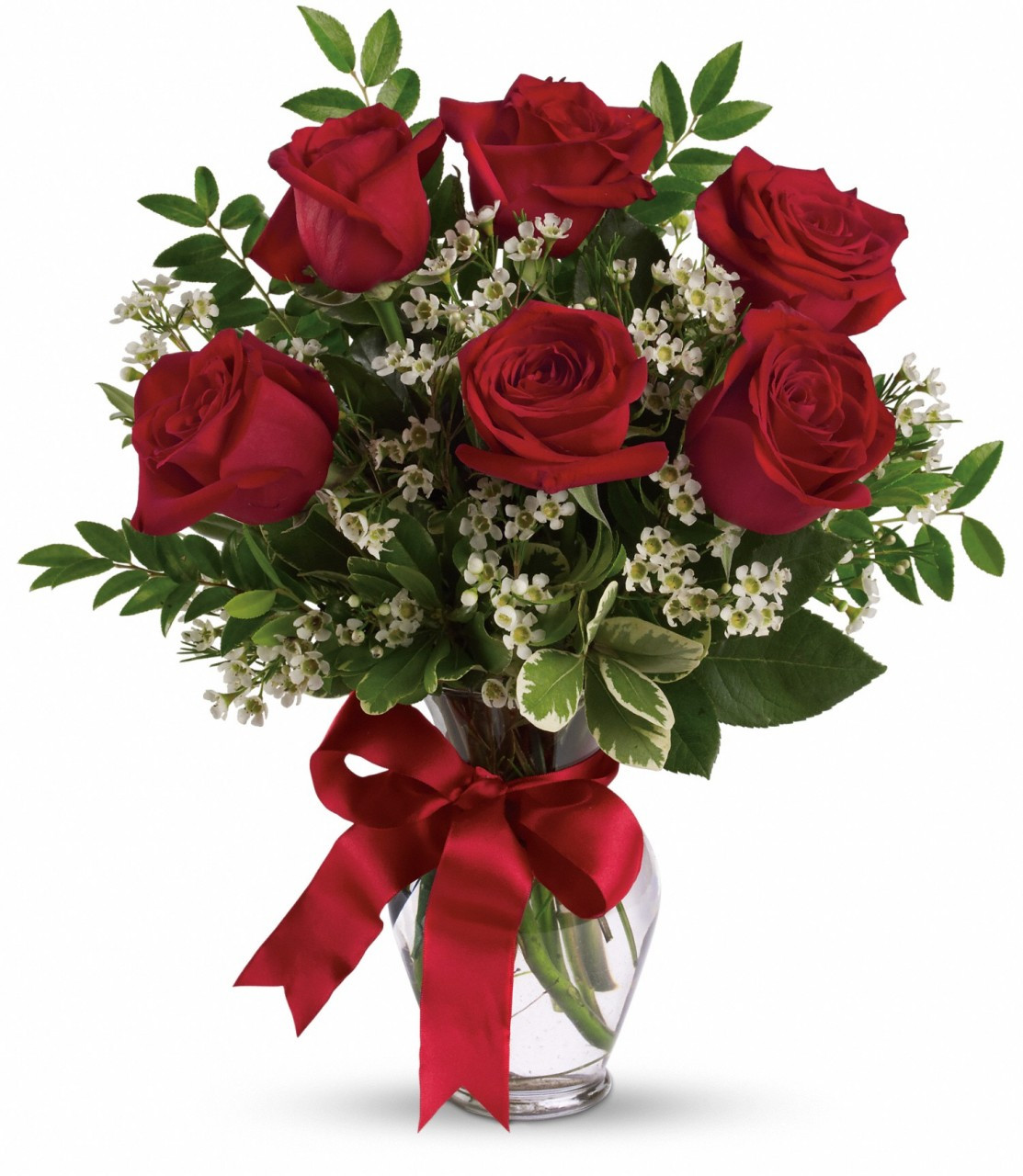6 Red Roses - Flowers From The Rainflorist - Ft. Lauderdale
