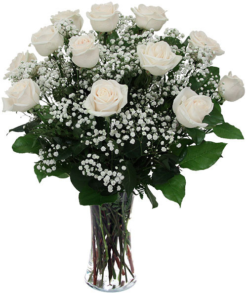 Frosty dozen white roses flowers from the rainflorist ft lauderdale frosty dozen white roses mightylinksfo