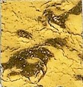 gl30.3.jpg
