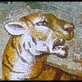 Mosaic Reproduction Kit by Michael Kruzich - Tiger