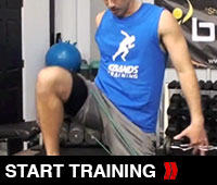 Biceps Quads and Core