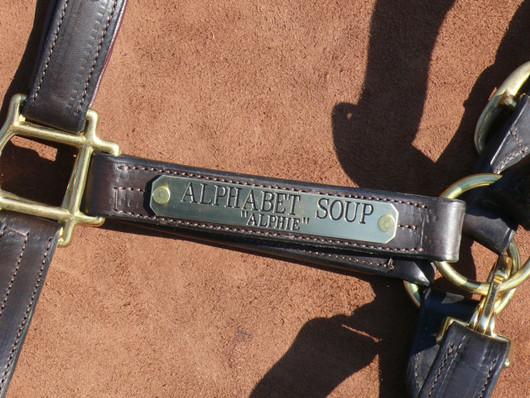 Engraved Halter Nameplate Longer Horse Size - Halter Tags