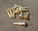 Extra Pair of Solid Brass Wood Screws