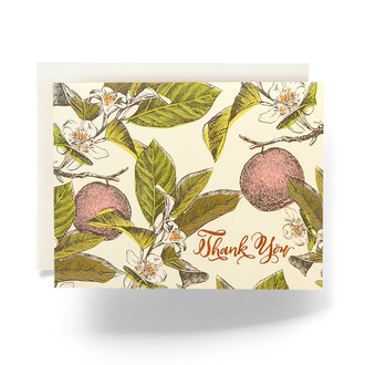 Orange Blossom Thank You Greeting Card