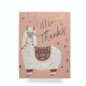 Alpaca Thanks Greeting Card