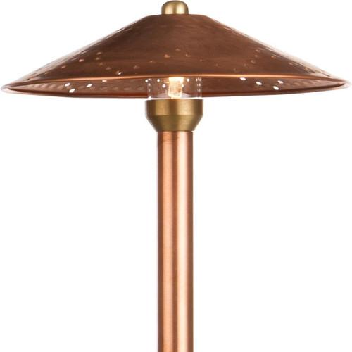 LED Raw Copper Hammerhead Area Light LED-PASH888