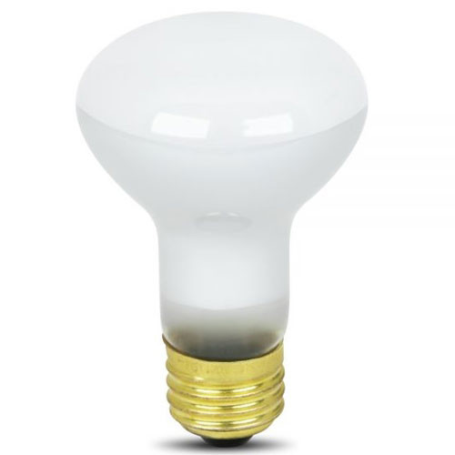 120V 45w BR20 Reflector Light Bulb