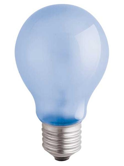 120V 60w Natural Spectrum A19 Light Bulb