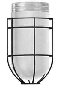 wire-guard-with-frosted-glass-jar.jpg