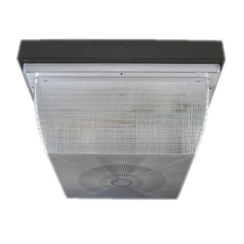 Commercial Outdoor Ceiling Lighting Fixtures: 200C Series Square Commercial Ceiling/Wall Light