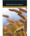 Shemita