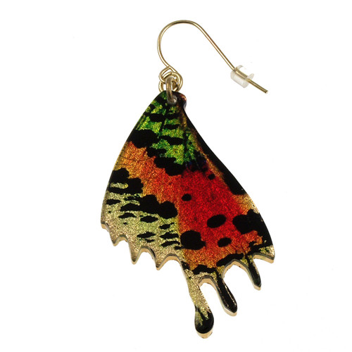 "4122-5 - Large 1 1/2"" Sunset Moth Wing Earring"