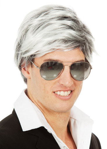 Pop Star Mens 60's 70's Grey Mod Costume Wig