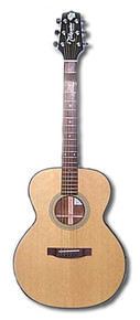 Takamine TED50C acoustic guitar