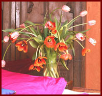 Long Stem French Tulips