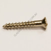Wood Screw Raised Slot Brass nickel plated