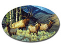 SafeArt Magnet Picture - Ladies First Elk