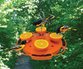 Ultimate Oriole Feeder, Feed Nector,Oranges & Jelly