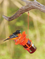 Jelly Jam Baltimore Oriole Bird Feeder Orange Blossom Jar