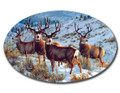 SafeArt Magnet Picture - Boys Club, Buck Deer