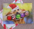 Leanin Tree CHRISTMAS CARDS - 10 Box - Dog with Ornament Smile